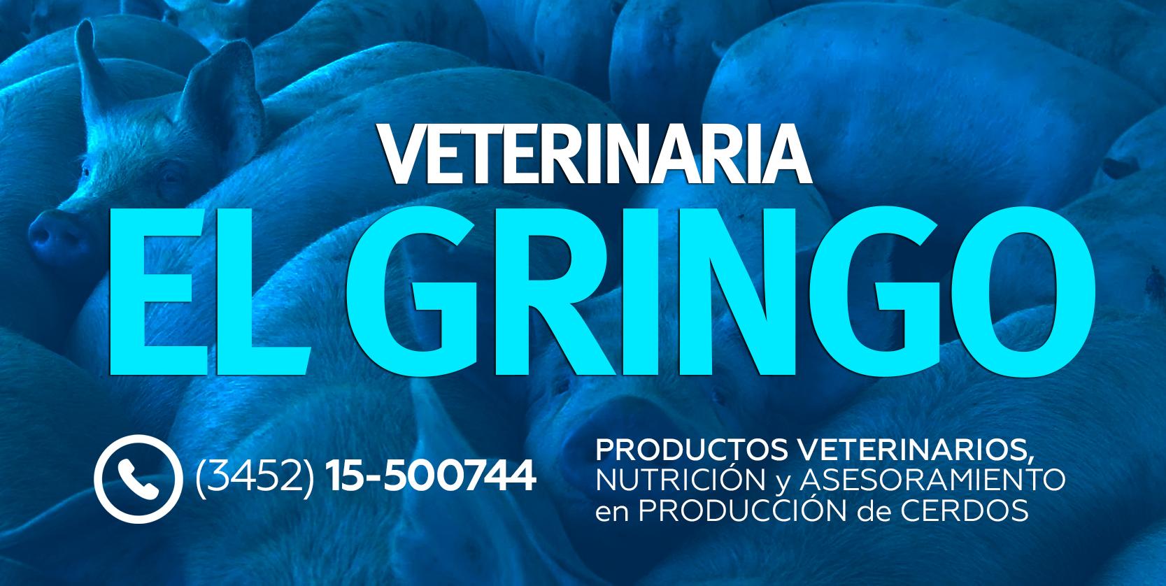 Veterinaria El gringo